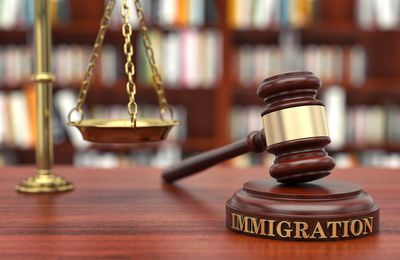 Hire a Migration Attorney for Your Business Visa Application