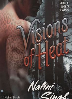 Ebook for dummies download free Visions of Heat
