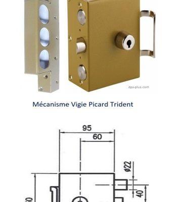 Serrurier Picard Annecy 74000 Serrure Vigie Picard Trident