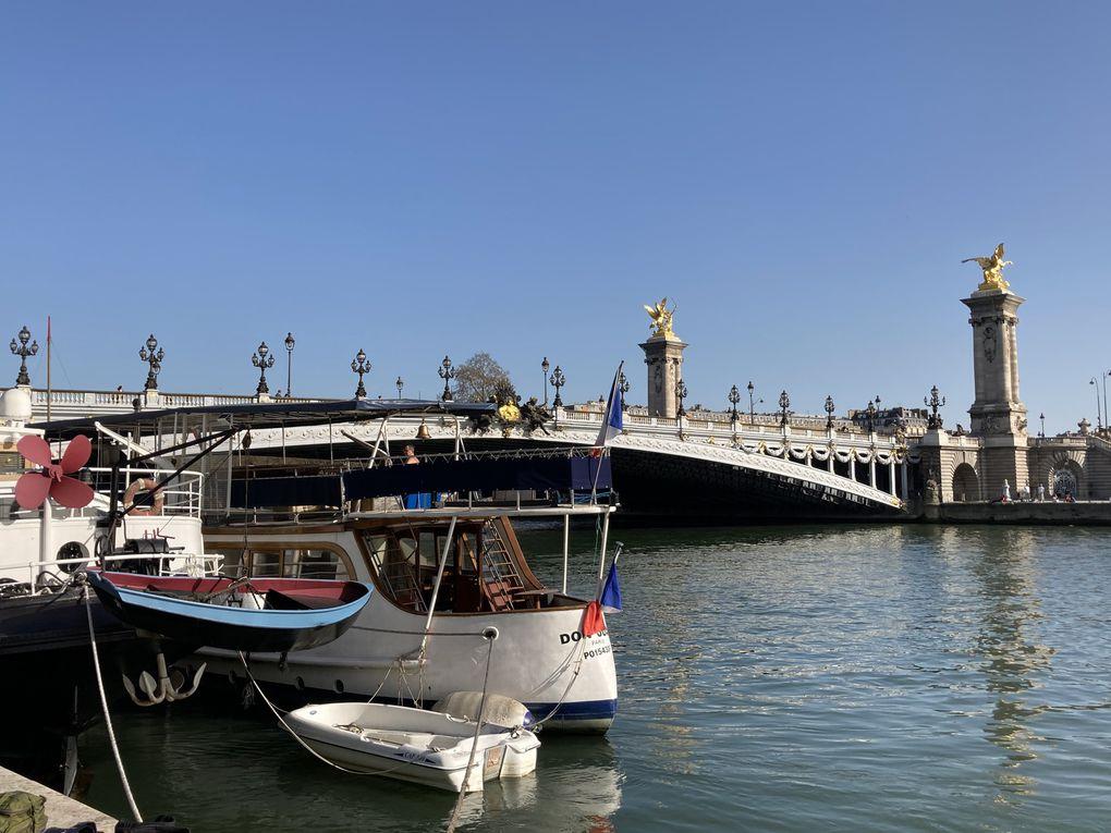 Retour sous le soleil le long de la Seine