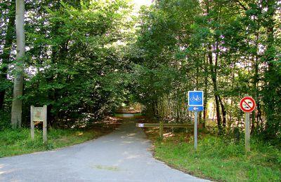 carrefour_Route de la Belle Image_Route du Volerbeau