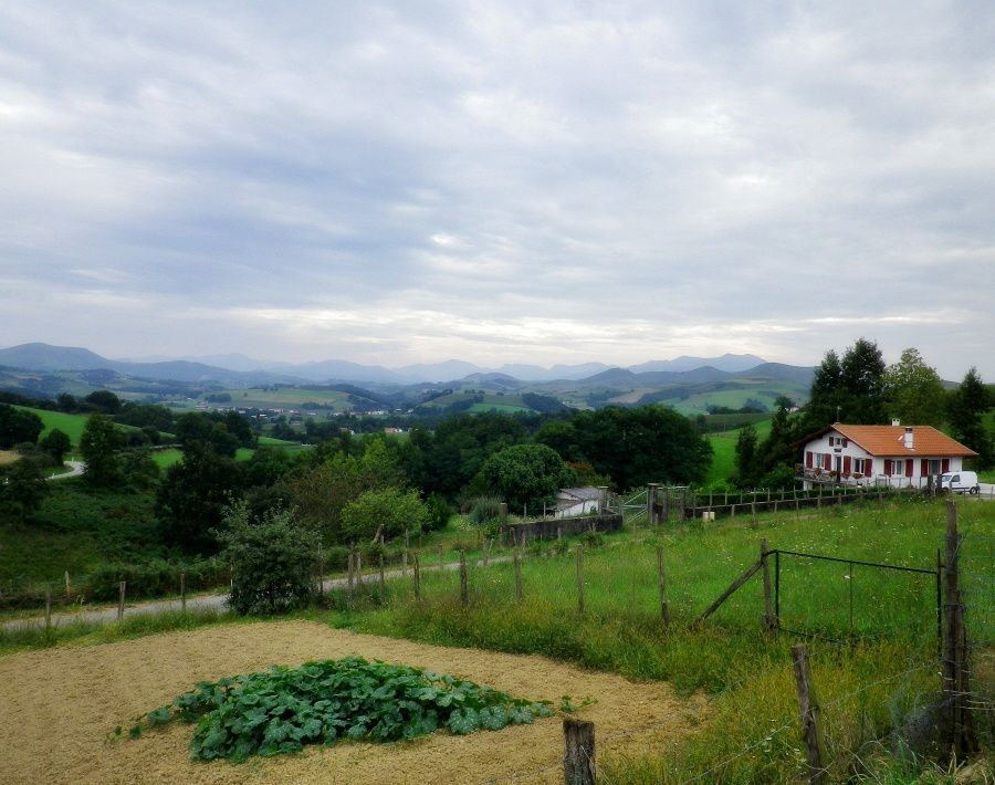 Plage d'Anglet, visite d'Espelette et paysages du Pays Basque