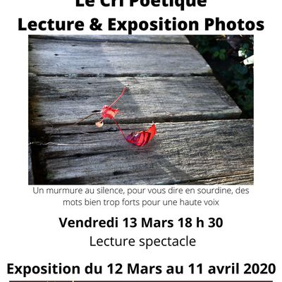 Report lecture spectacle