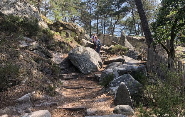 Boucle en forêt de Fontainebleau, 21,4 km.