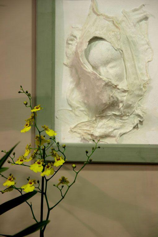 """Installation des """"bébés blancs"""" faite dans un magasin de fleurs près de chez moi."""