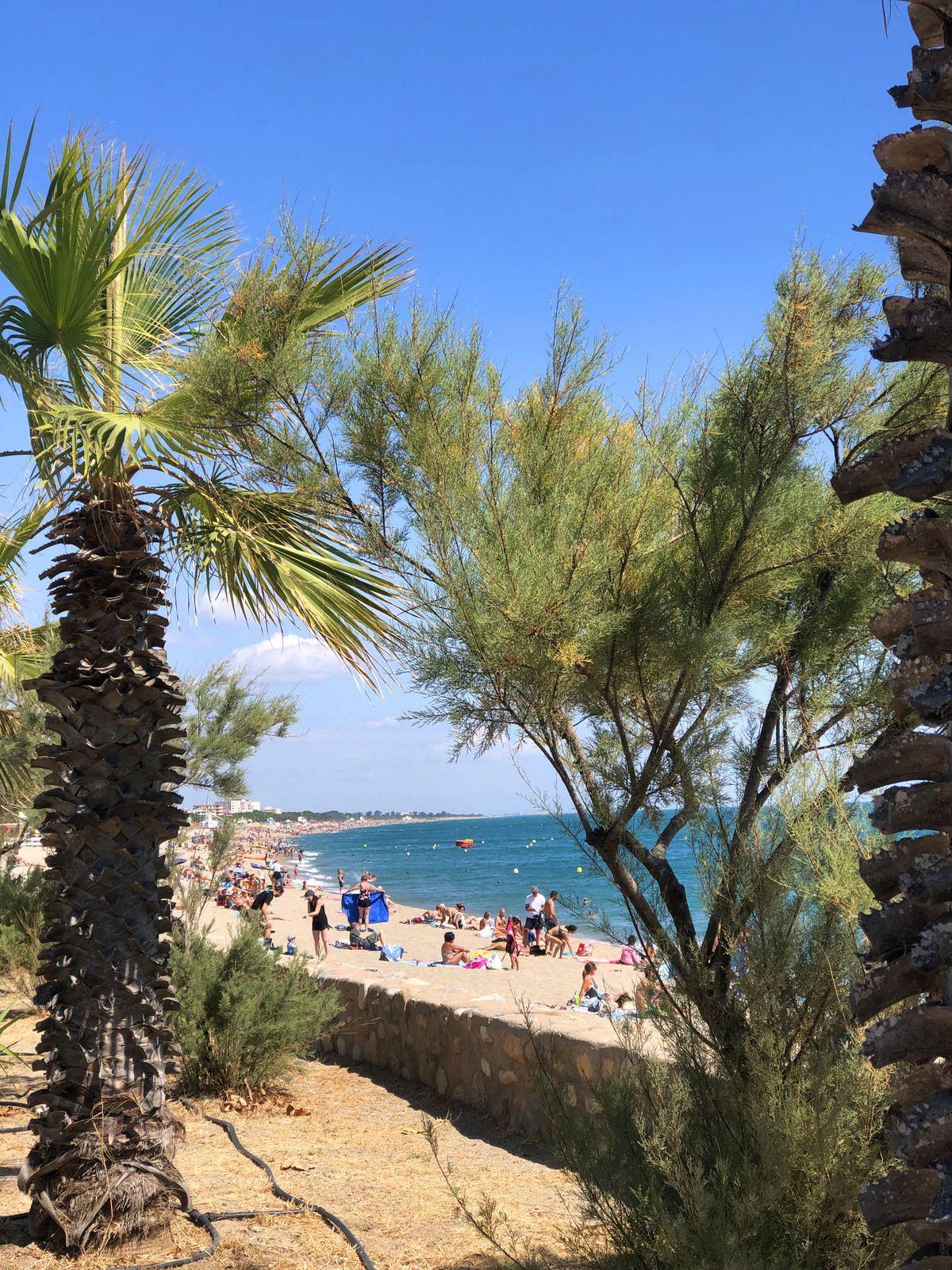 Argelès-sur-Mer dans les PO