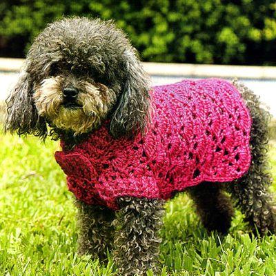 Adorables manteaux pour chien avec leurs grilles gratuites !