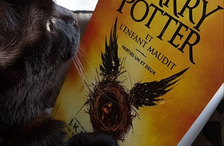 """Harry Potter et l'enfant maudit"" de J.K Rowling, John Tiffany et Jack Thorne"