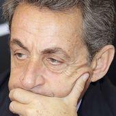 """Sarkozy en guerre avec la """"Manif pour tous""""..."""