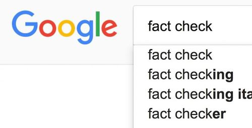Google Fact Check