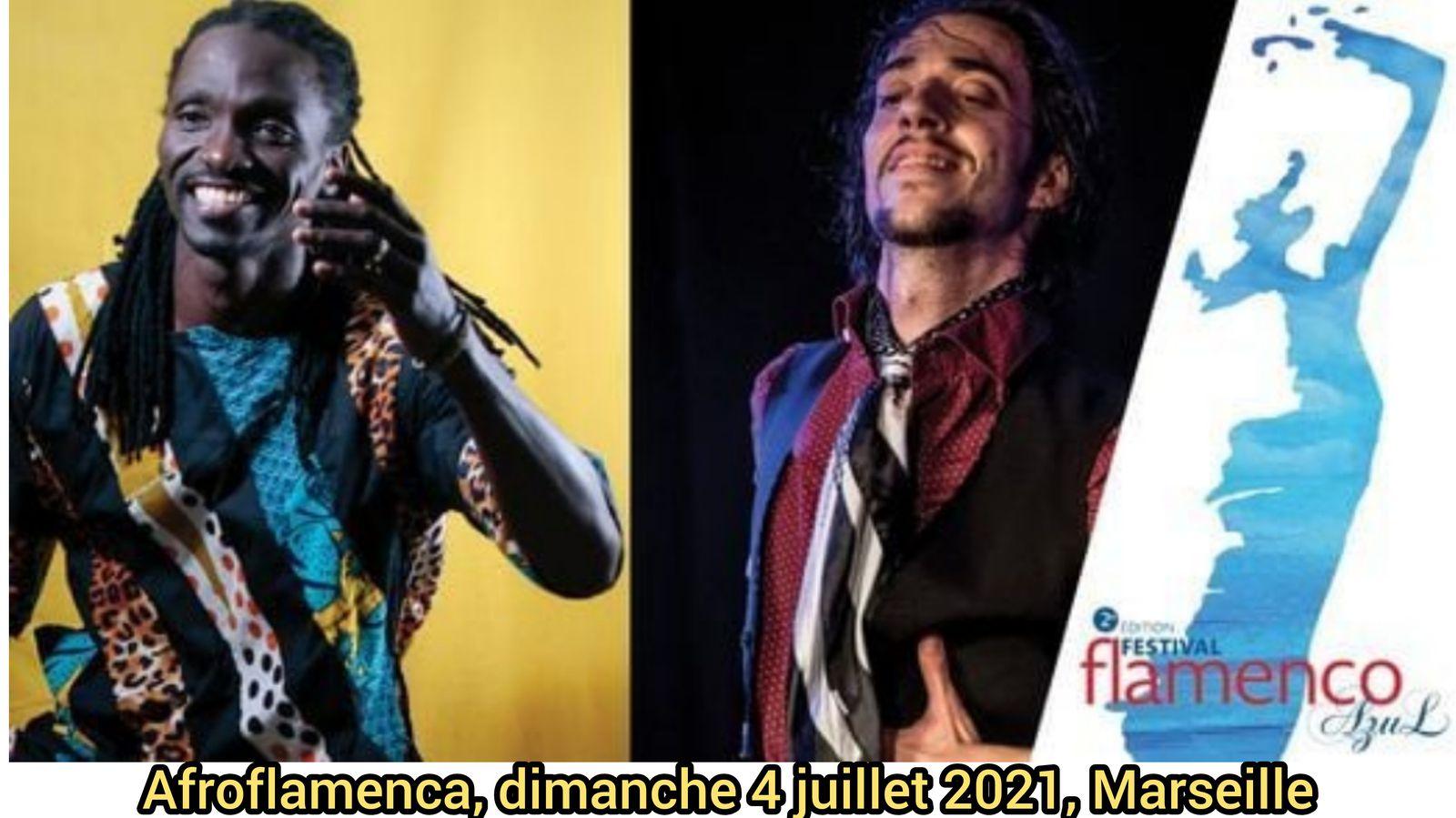 Cliquez ci-dessous pour plus d'infos sur la performance AfroFlamenca.