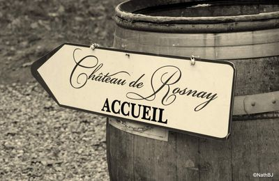 Exposition chateau de Rosnay