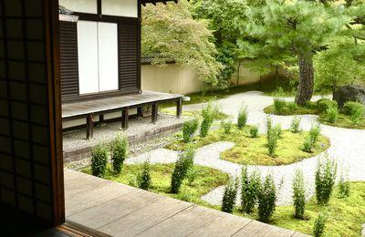 Kyôto: Le Rozan-ji 廬山寺, petit temple aux îlots de fleurs violettes