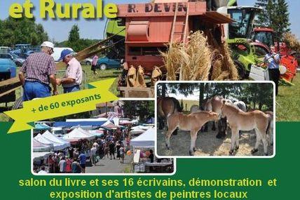 Delme 59 eme foire artisanale et rurale le 25 juin 2017