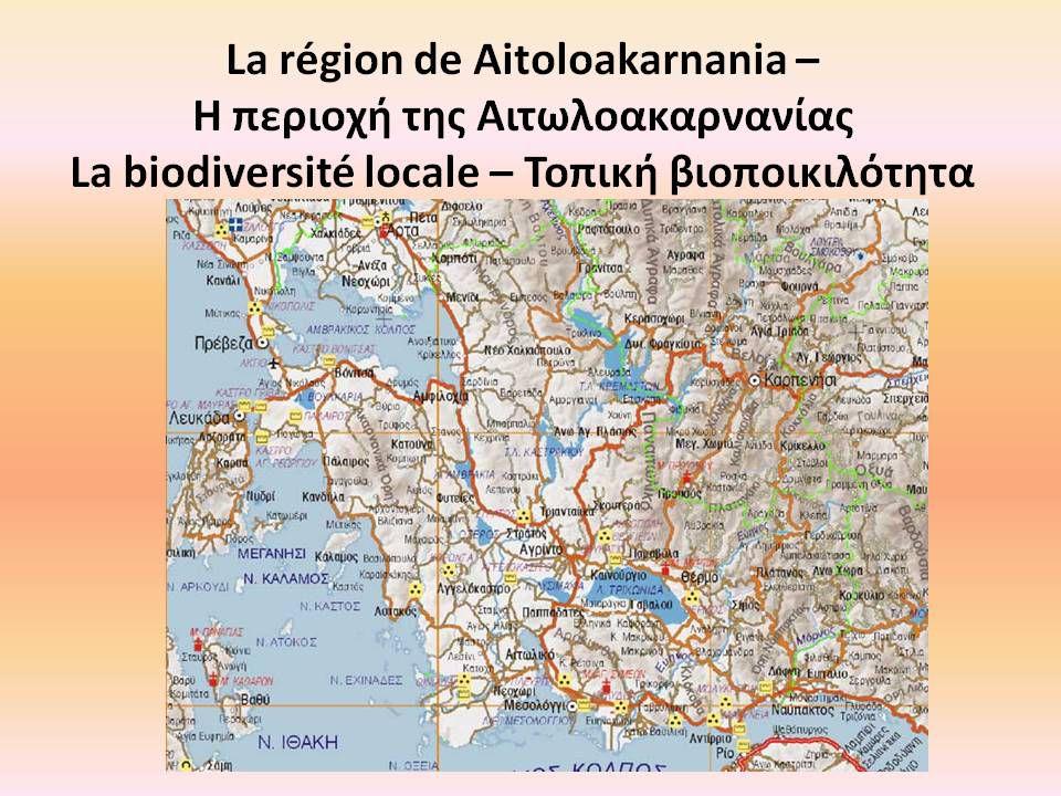 CLE Ecole Primaire Grèce - Album photos de la biodiversité avec légendes- français/grec
