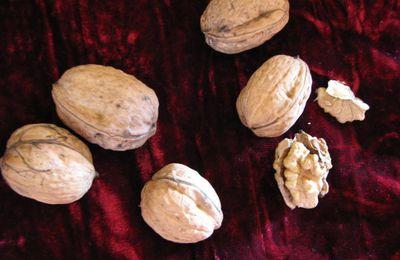 Noix / walnuts