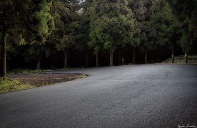 """Ce n'est pas le sujet qui fait une photographie, mais le point de vue du photographe."""" – André Kertész Route Du Volcan"""