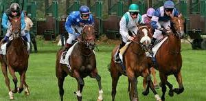 10 MAI 2017  CHANTILLY R1….C1. PLAT — GALOP