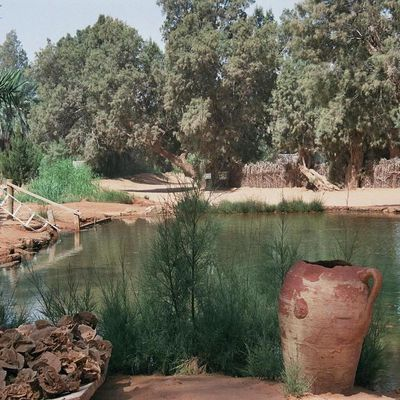 L'oasis de Ksar Ghilane
