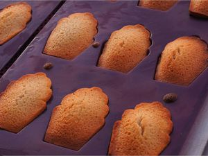 Madeleines au miel glace fromage blanc