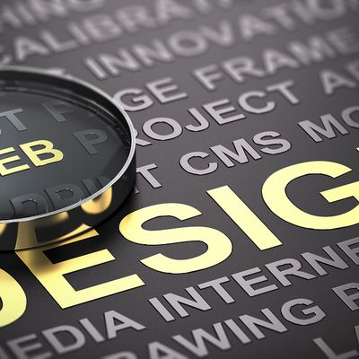 What Can a Professional Web Design Do to Your Business Website?