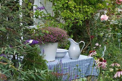 Lovely cottage garde