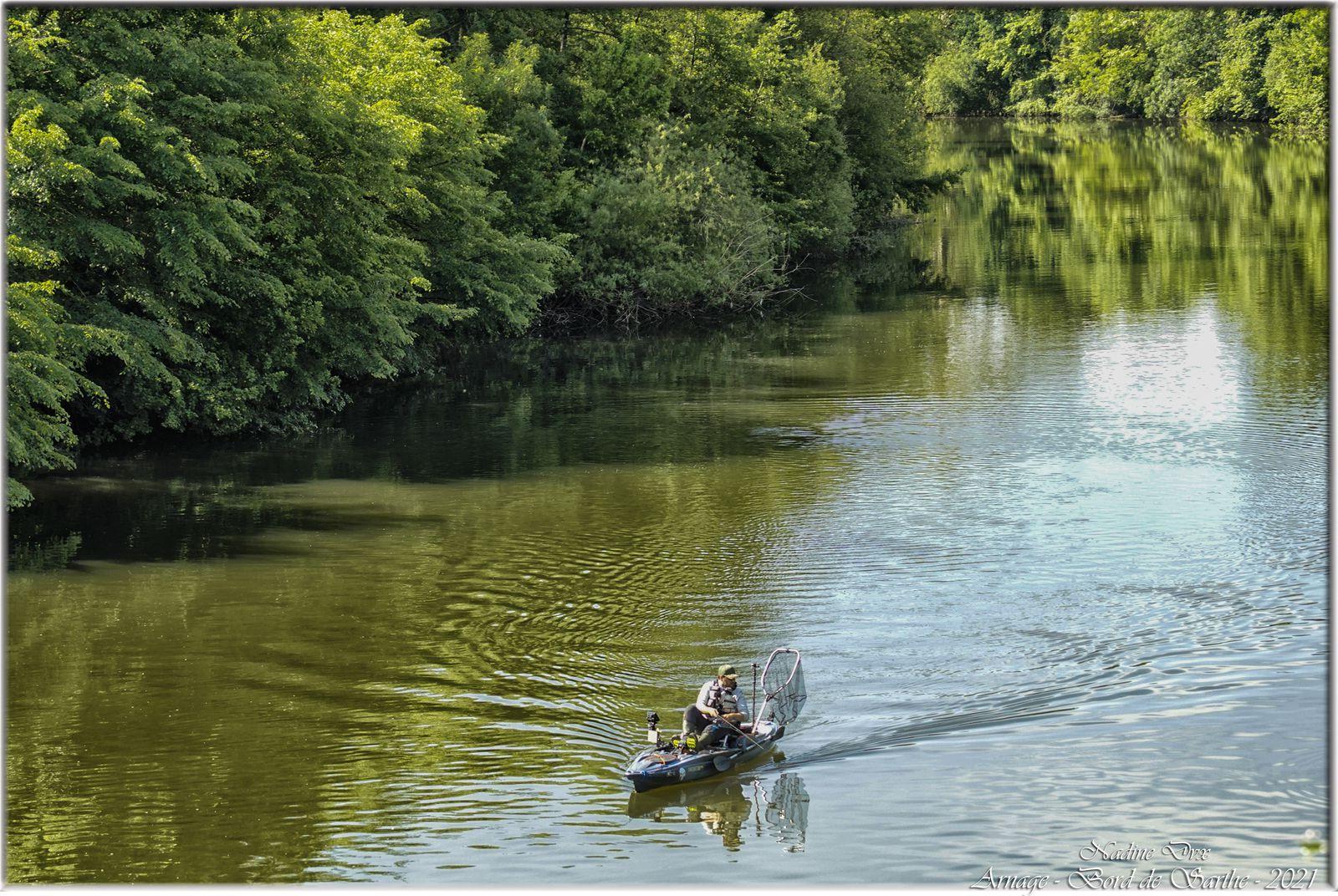 Le long de la Sarthe et le lac de la Gèmerie  - Arnage