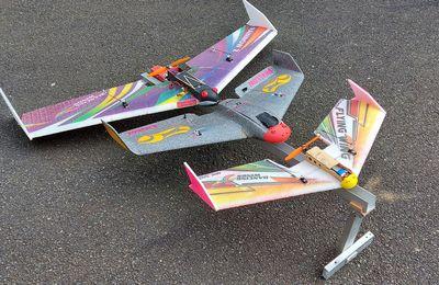 Festival d'ailes volantes