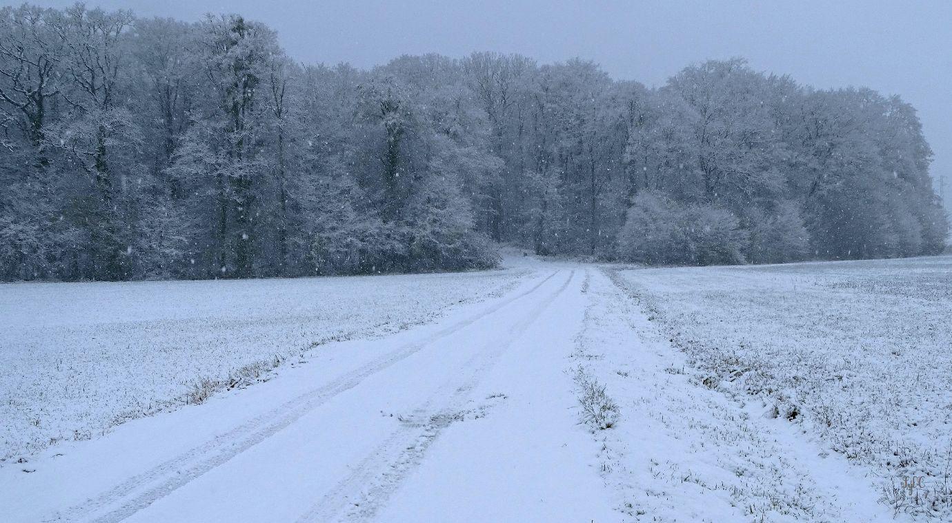 Confinement 2 - Jour 33 : Première neige - 5 photos