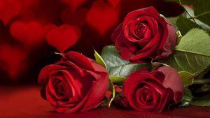 Ma Wishlist de la Saint Valentin 2015 !