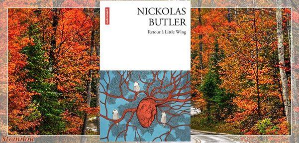 Retour à Little Wing - Nickolas Butler