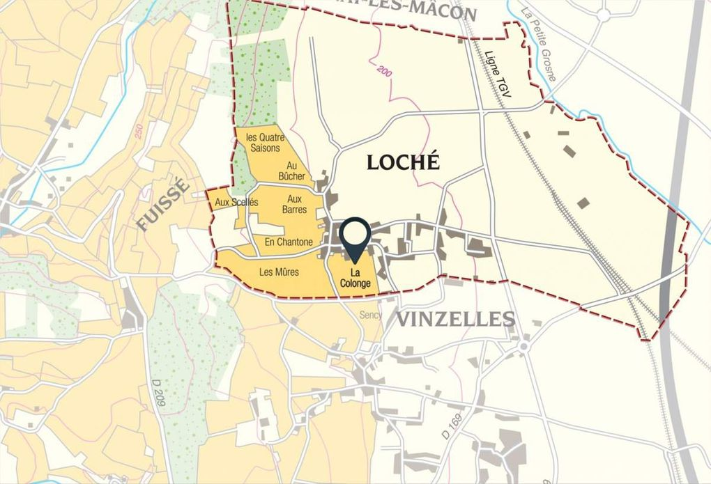 Livre web: Les vins de Pouilly-Fuissé et l'arrivée des premiers crus