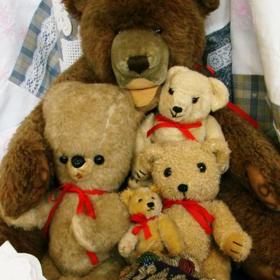 Ours en peluche : comment constituer une collection?