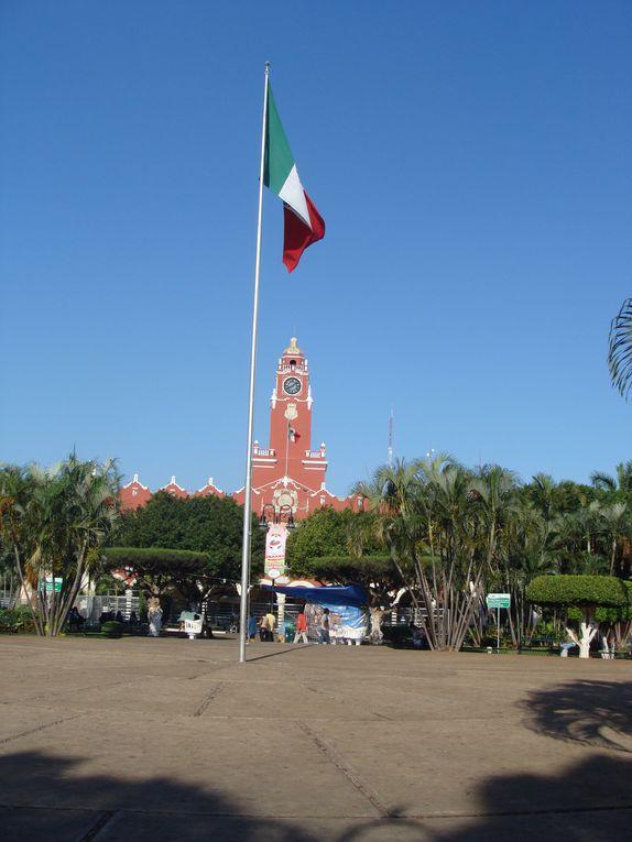 Album - Mexique  (Février -mars 2011)