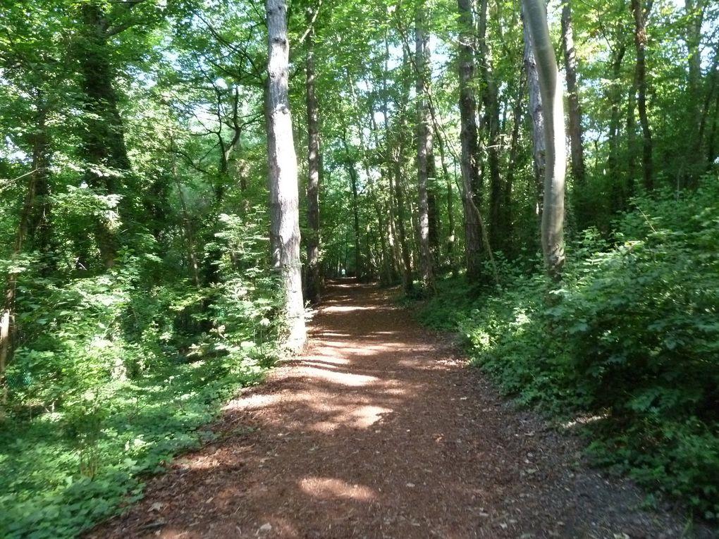 Randonnée du Parc de Sceaux à Châtillon-Montrouge - 10,6 km.