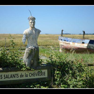 Noirmoutier, le safari vendéen