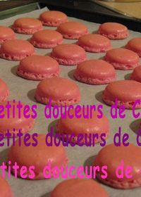 MACARONS FRUITS ROUGES
