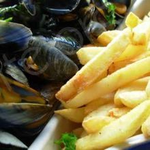 Mussels and french fried potatoes - Moules frites - Molas e fritas