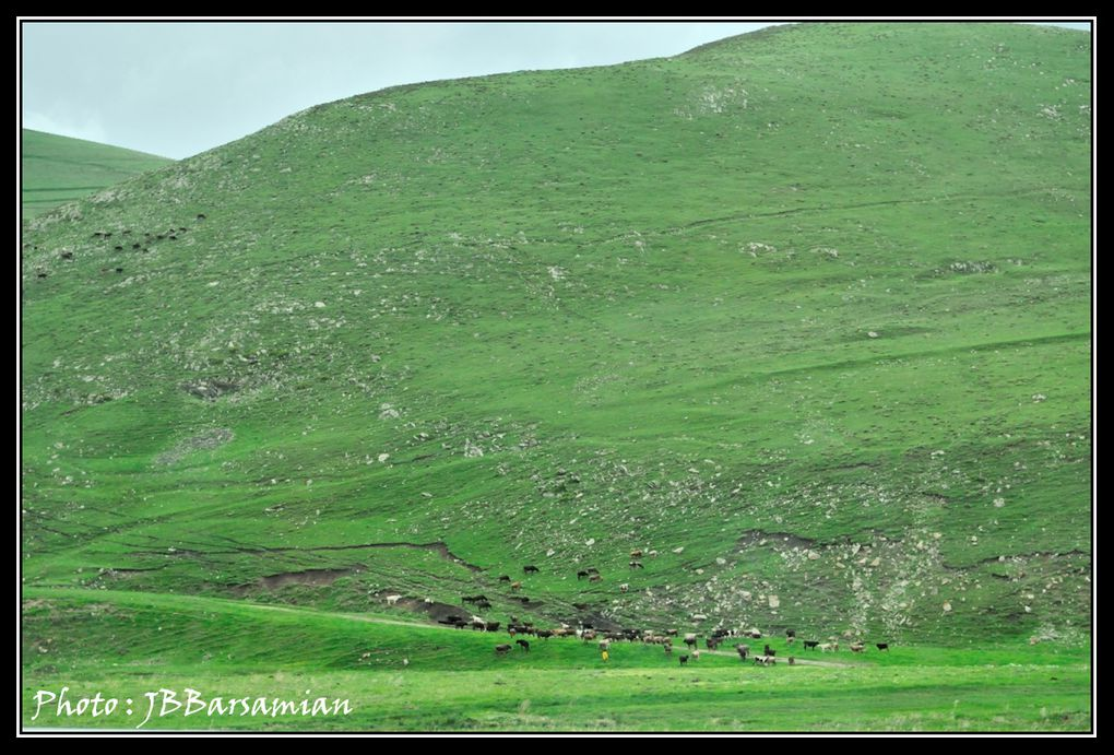 Album - 028 DIRECTION  VANADZOR