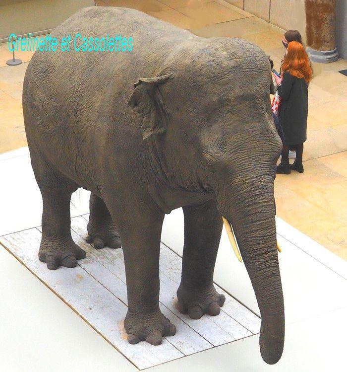 Parkie, la mascotte de l'exposition