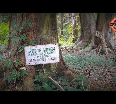 « Visite du Jardin Botanique de Bingerville »