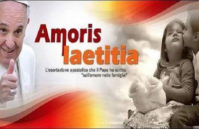 Une famille de familles (n°87 & n° 202 de Amoris Laetitia)
