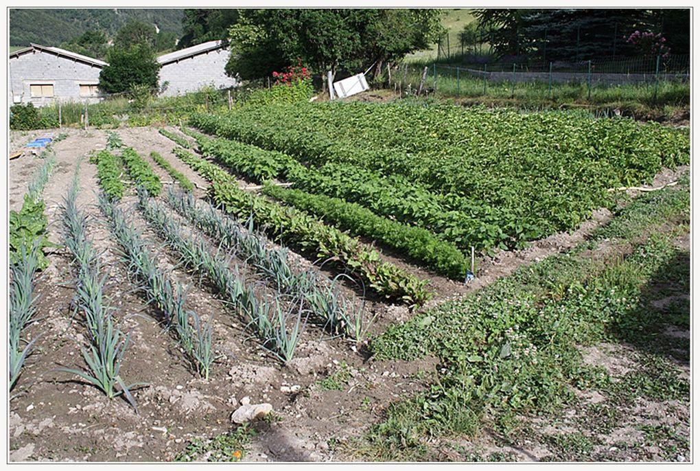 Note de l'auteur : par ces photos j'ai voulu retracer la totalité du travail de nos « poètes- agriculteurs »
