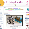Candidat 189 : Le blog de Miss Bricole
