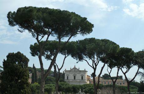 Rome, promenade dans le Palatin et les jardins Farnèse