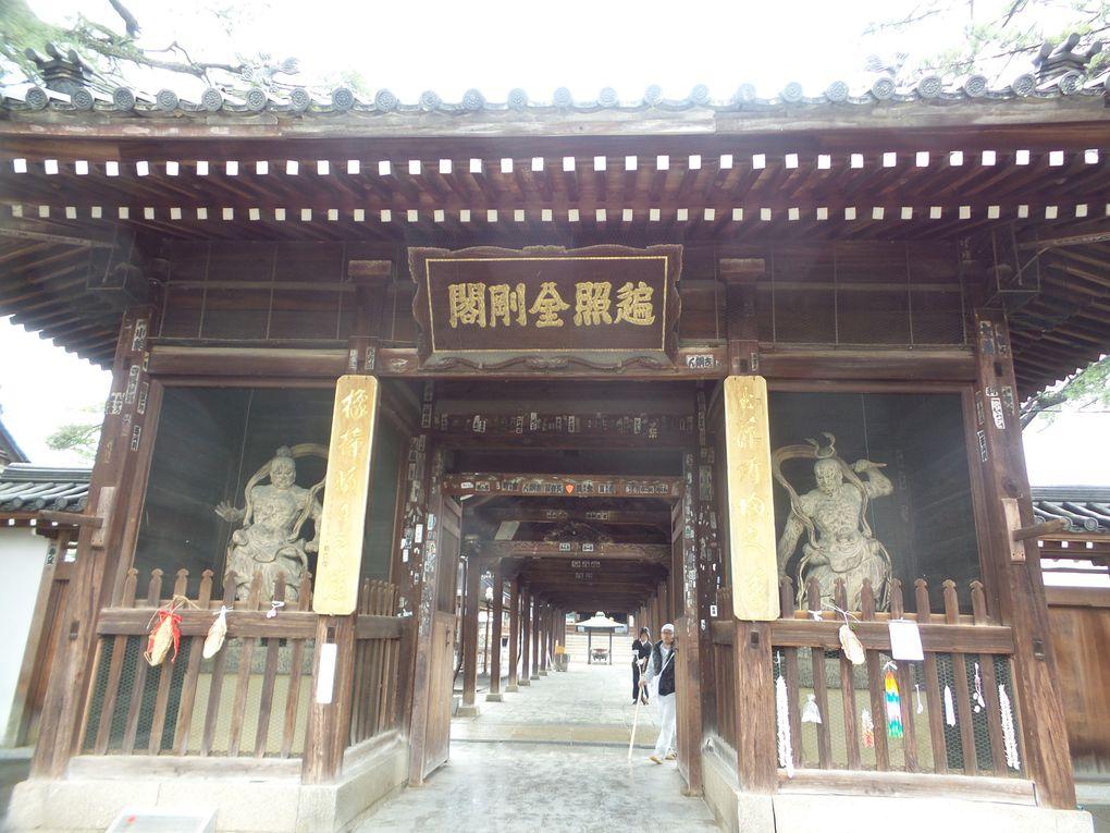 Temple 75