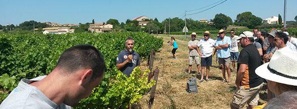 Innov'Action 2017 : Un beau succès pour les 26 fermes innovantes en Occitanie