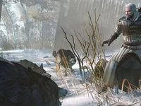 The Witcher 3 : Wild Hunt se dévoile dans une video gameplay !