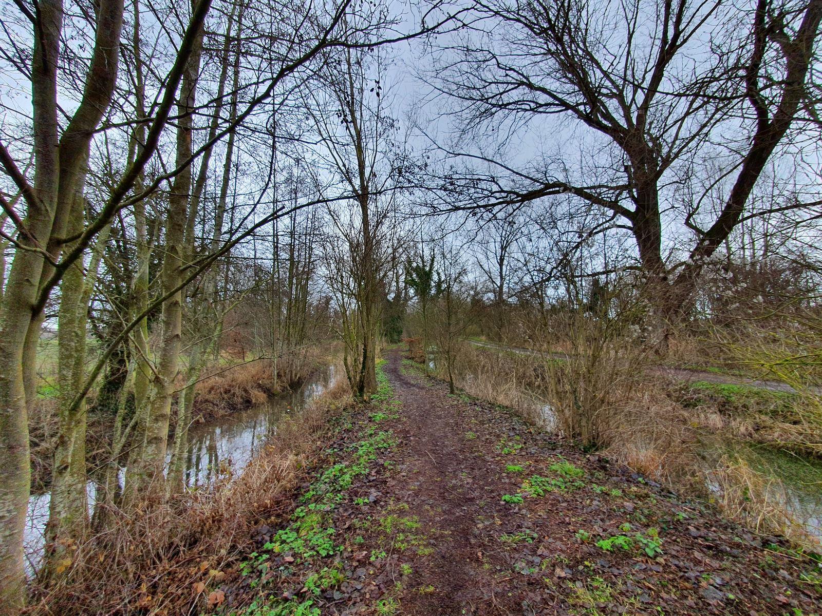 Le sentier du Chemin Vert, à Billy-Berclau