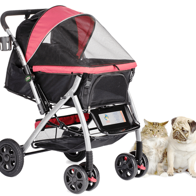 Teach Your Dog How to Ride a Stroller